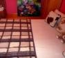 """Foto Deka detská jednovrstvová vzor """"svetlá kocka"""""""